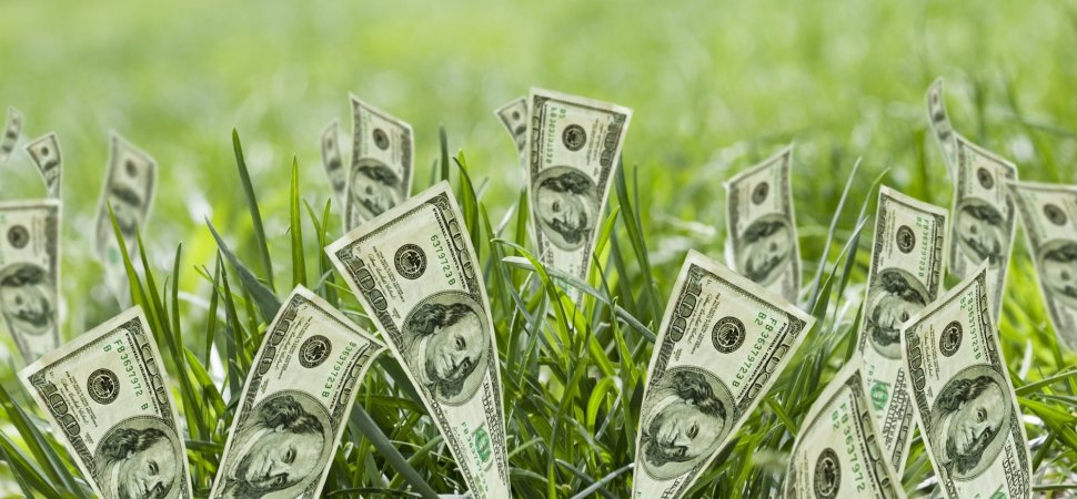 mistakes to avoid handling seed funding