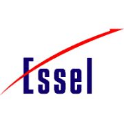 Placement Partners & Recruiters 27 - essel group squarelogo 1424838725519