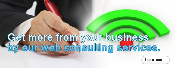 Strategic Web Consulting