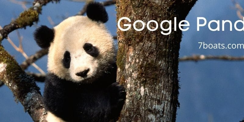 How to benefit from Google Panda Update and Penguin update