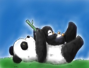 Google Panda and Penguin update