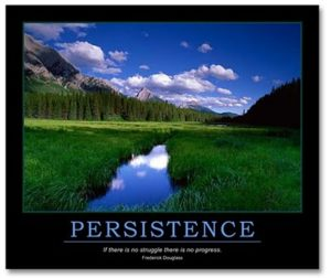 business persistence