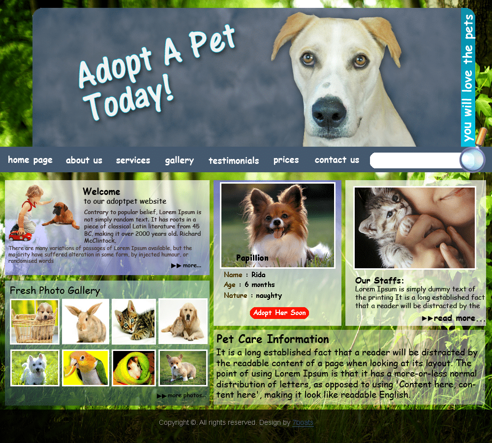 Cheap Web Design & Development for Beginners 32 - animals pets