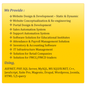 Custom web development, custom software development
