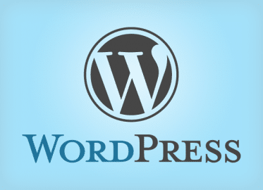 Effective Use of WordPress While Blogging