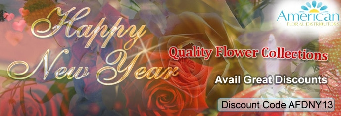 Banners Designed by Us 67 - new year banner