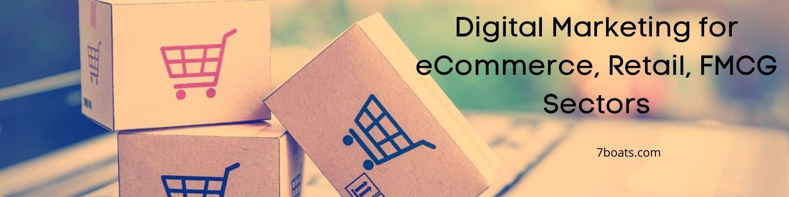 Digital Marketing for eCommerce, Retail, FMCG Sectors