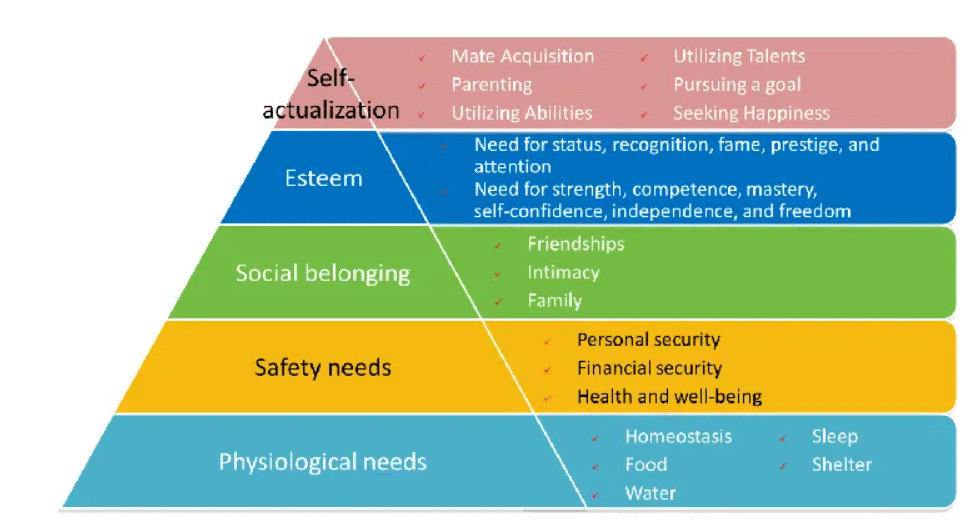 Maslow's law - hierarchy of needs